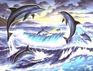 """Раскраска акриловыми красками по номерам """"Дельфины"""" (Арт ..."""
